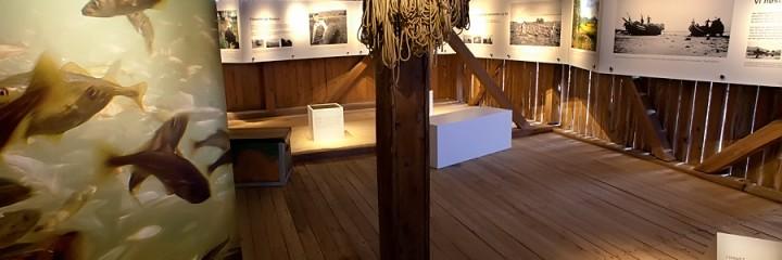 Utstillingssuksess I Hamarøy